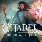 Citadel: Forged with Fire igrica