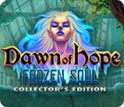 Dawn of Hope: The Frozen Soul Collector's Edition igrica