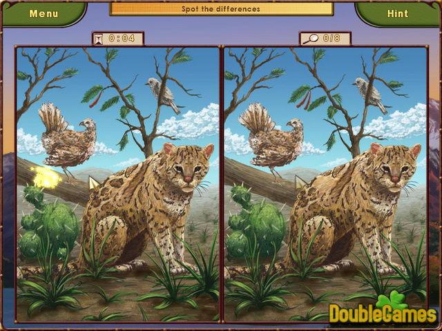 World Riddles Animals 1