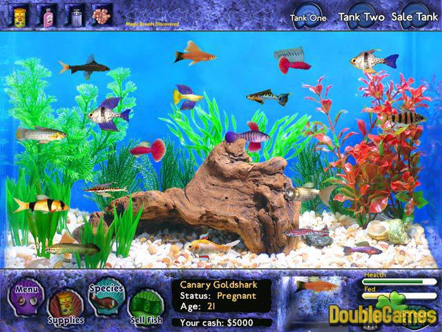 Free Download Fish Tycoon Screenshot 1